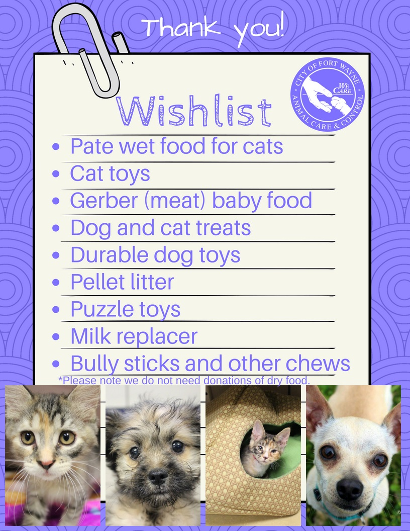 Kitten Wishlist 8.2018