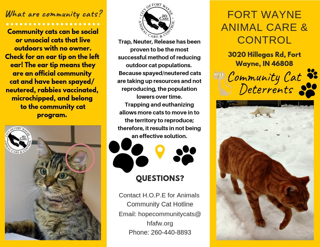 Community Cat Program - City of Fort Wayne