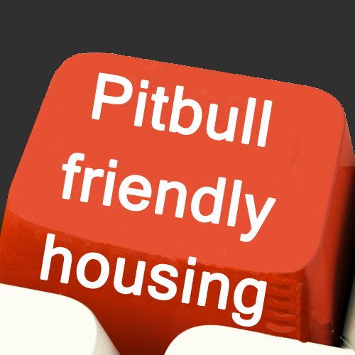 pitbullfriendly