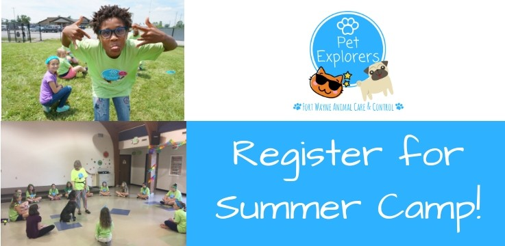 Pet Explorers Day Camp